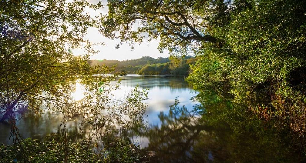 Desembocadura Río Miño