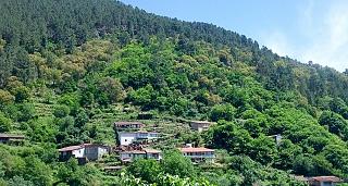 Escapada Burbuja Termal-Relax en la Ribeira Sacra