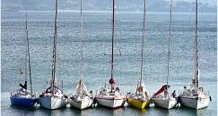 Private boat trip around Arousa sea loch