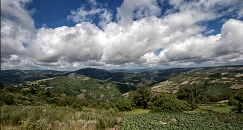 Private Transfer From Sarria To O Cebreiro