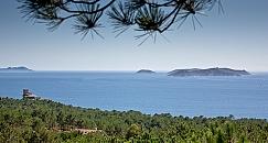 Visita guiada a las Islas Cíes